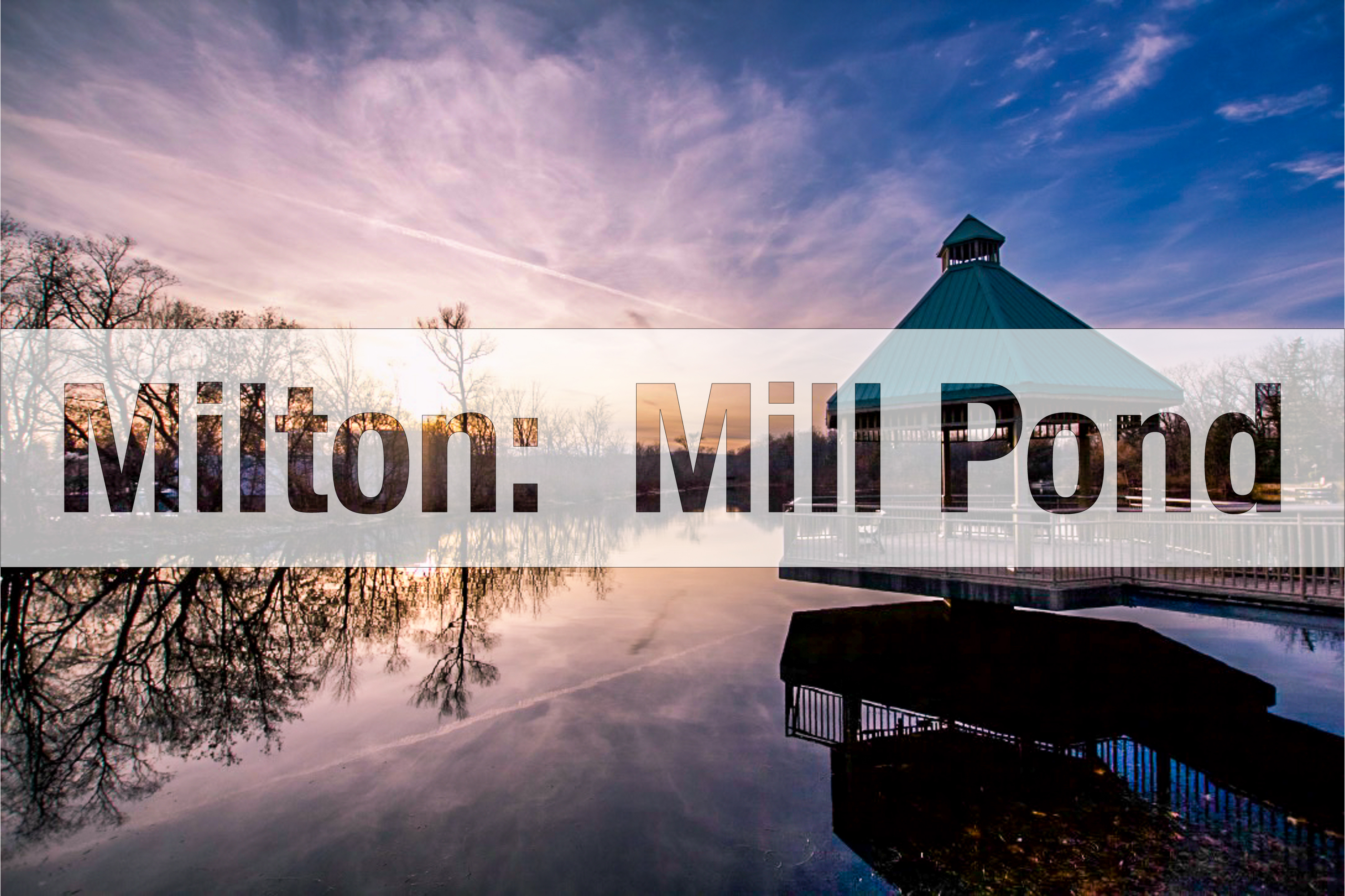 A Popular Destination for Milton Residents:  The Mill Pond