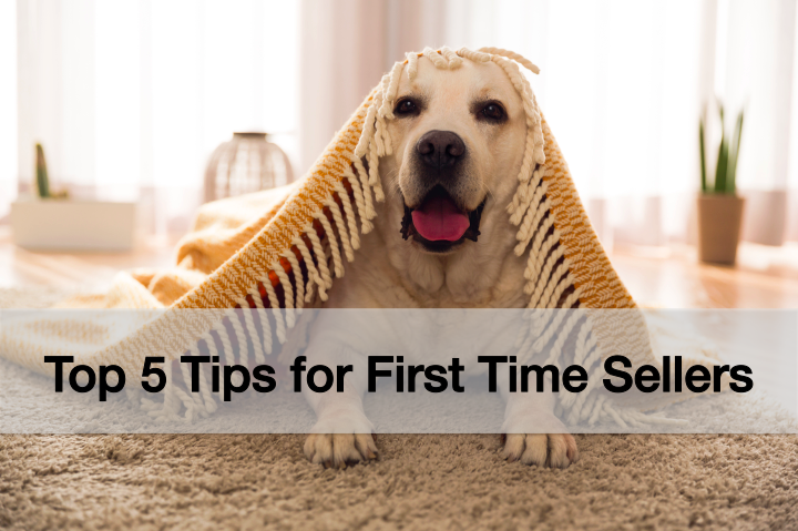 5 Tips for First Time Home Sellers