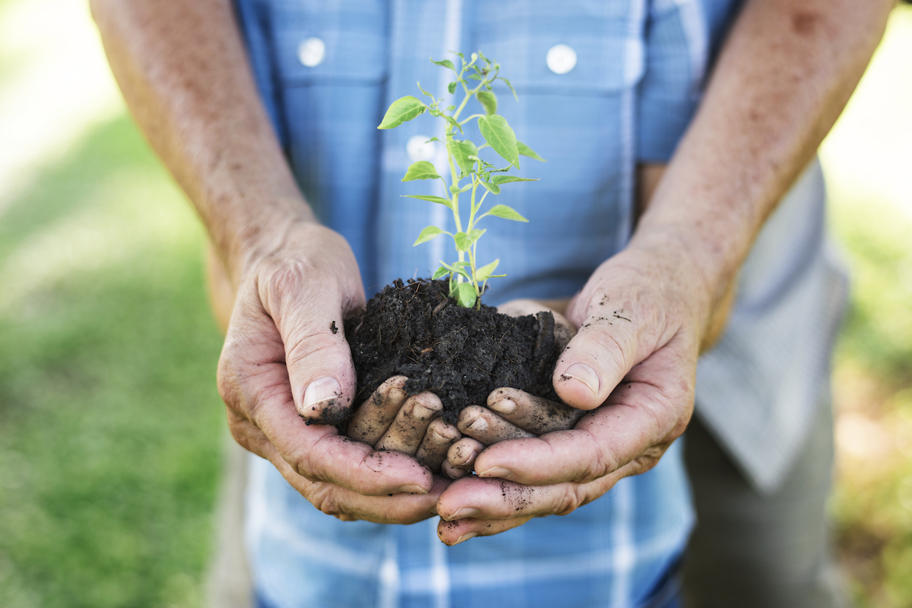 family-planting-a-new-tree-for-the-future-25CB4FL